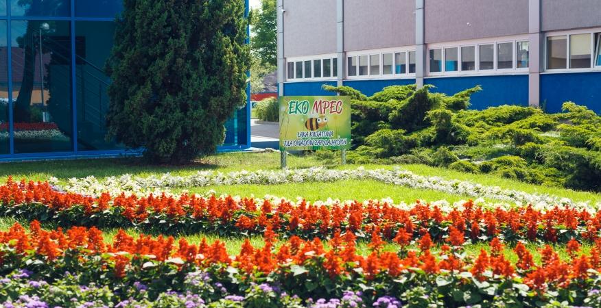 """Centrum Edukacji Ekologicznej """"EkoSzkoła"""""""